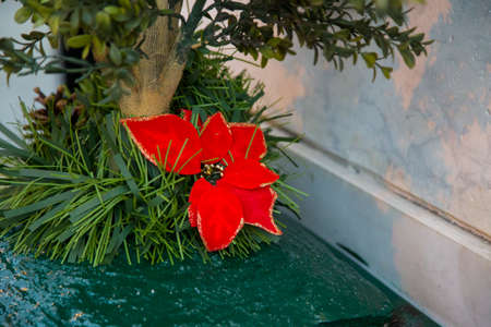 horizontal image with detail of a Christmas decoration tied to a garden plant
