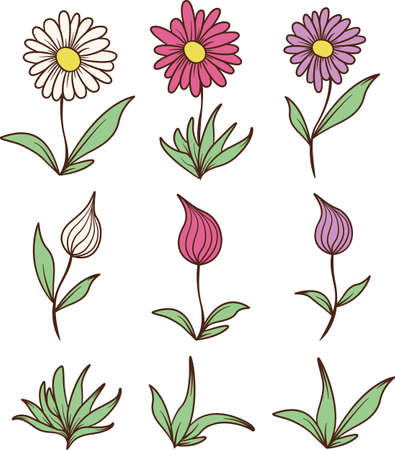 A collection of simple open and closed flowers.
