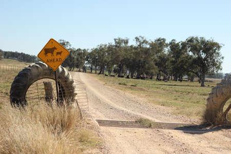 farm property cattle road crossing grid across a dry drought stricken dusty dirt road in rural New South Wales, Australia Banco de Imagens