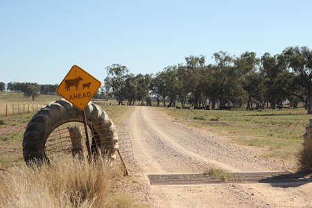 farm property cattle road crossing grid across a dry drought stricken dusty dirt road in rural New South Wales, Australia Фото со стока