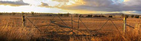 Viste panoramiche di terreni agricoli secchi e colpiti dalla siccità attraverso vecchi cancelli di fattoria chiusi in acciaio in un caldo pomeriggio a Gunnedah, Nuovo Galles del Sud, Australia rurale