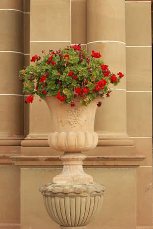 tall sandstone carved ornate heritage flower pots in the front of an ornate palace pillar detail with red geranium flowers overflowing over the sides