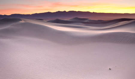 Mesquite Flat Sand dunes located in Death Valley National Park. View of the dunes at sunrise. Stock Photo - 12531661