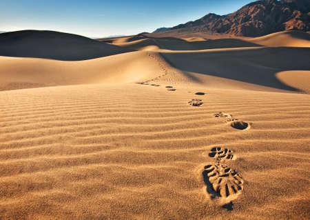 huellas de pies: Las dunas de arena de Mesquite piso situado en Parque Nacional Death Valley. Vista de una sola pista de las huellas se dirigían hacia la cámara.