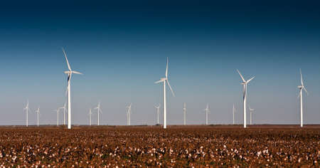 A wind turbine farm in a cotton field in rural West Texas Banco de Imagens