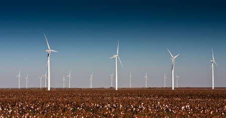 power: A wind turbine farm in a cotton field in rural West Texas Stock Photo