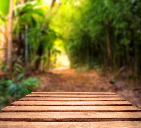 Old weather worn plank table top with tropical jungle path in background   Focus is on planks in foreground Stock Photo