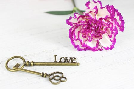 Valentines day key to love and pretty carnation flower on a distressed white wood background