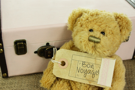 luggage tag: Teddy Bear with vintage suitcase and Bon voyage! on luggage tag. Stock Photo