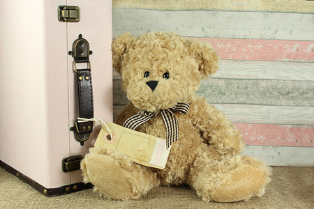 teddy bear with vintage suitcase and blank tag for your own text