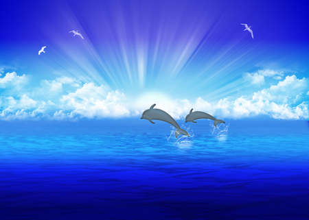 Pair jumping dolphin on background rising sun photo