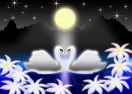 Pair of the swans on night lake in light of the full moon photo