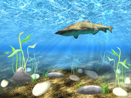 Abstract background of the underwater world with a floating shark. photo