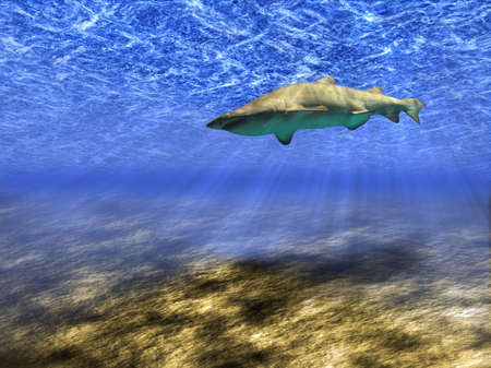 Abstract background of the underwater world with a floating shark.
