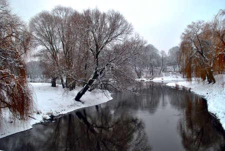 landscape riverside: The Winter snow landscape. Riverside Tree.