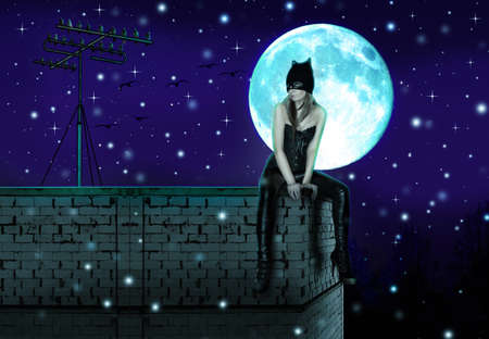 female cat sits at night on the roof of the house on a background of the full moon Stock Photo