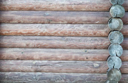 brown texture of natural wood logs