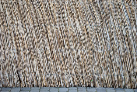 texture interconnected natural cane stalks