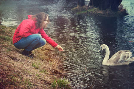 Girl playing with a swan
