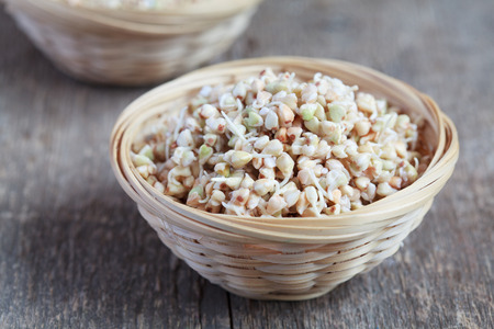 Green buckwheat sprouts in a bowl, close up, selective focus Standard-Bild