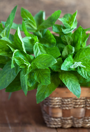 minted: Bunch of fresh green mint in a basket on a wooden table, selective focus