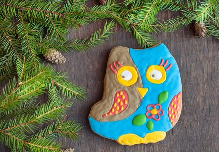 christmas cookie: Christmas homemade gingerbread cookie in the form of an owl on a wooden background, selective focus, space for text Stock Photo