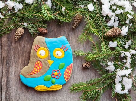 christmas cookie: Christmas homemade gingerbread cookie in the form of an owl on a wooden background with fir branches, cones and snow, selective focus, space for text