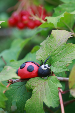 viburnum: Plasticine world - little homemade red ladybird with real ant sitting on a leaf viburnum, selective focus on head Stock Photo