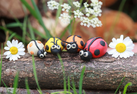 grazing: Plasticine world - four little homemade colorful ladybirds sitting on a tree trunk, selective focus