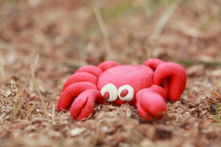 sawdust: Plasticine world - little homemade red crab sits on the sawdust, imitating the sand, selective focus on head
