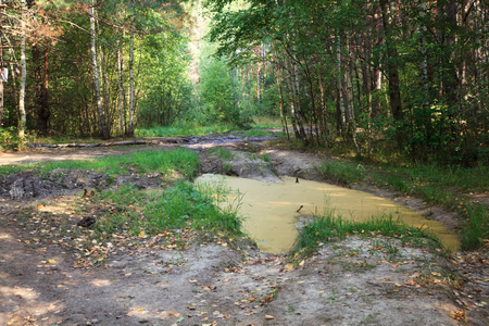 insurmountable: Impassable forest road of mud and clay, offroad