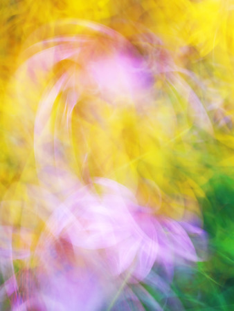light streaks: Dance of flowers, Photo art, bright Colorful light streaks abstract background, Effect of movement