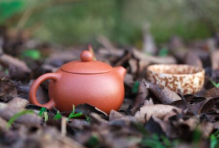 Traditional chinese tea ceremony accessories tea pot and tea cup amongst autumn leaves, selective focus on the tea pot Stockfoto
