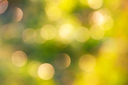 multicoloured: natural multicoloured bokeh background