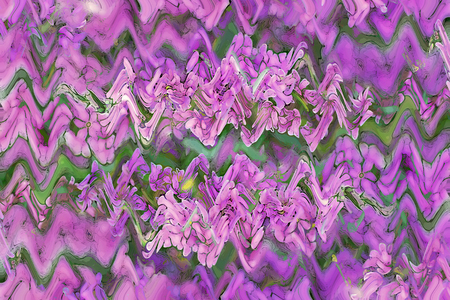 herba: Art floral bright colorful background with purple loosestrife Lythrum salicaria Stock Photo
