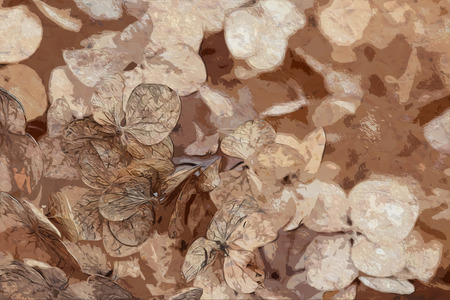 Photo art floral brown colorful background