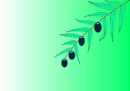 Lonely olive branch on a green background Vector