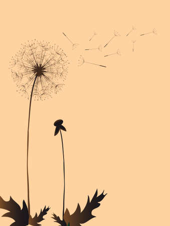 Dandelion in the Japanese style, background Vector