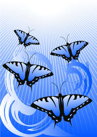 The blue butterflies flying to light