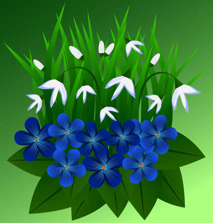 blue and white flowers design Illustration