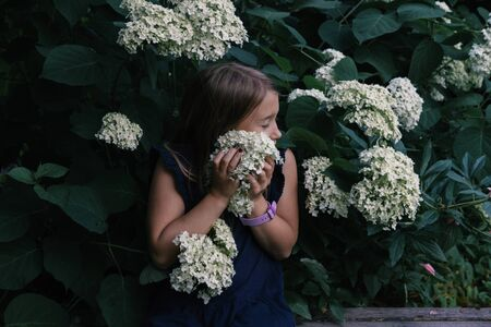 Cute little girl smelling hydrangea. Person holding flowers on dark natural background. Child enjoying bouquet outside. Going to park, forest in summer and spring. Connection with nature idea