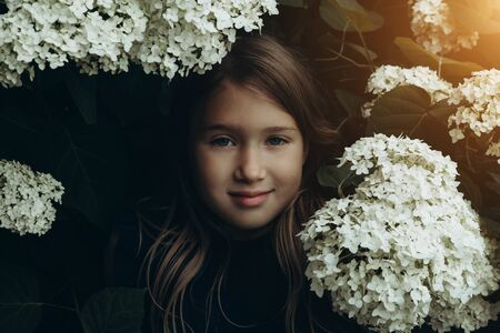 Cute little girl in blooming hydrangeas. Person and flowers on natural background with sushine. Child enjoying bouquet outside. Going to park, forest in summer and spring. Connection with nature idea Banco de Imagens