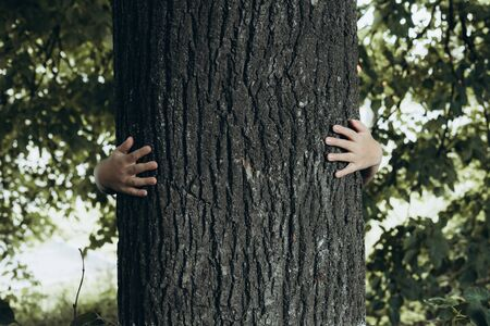 Kids hands hugging tree. Child in park. Save planet concept with copyspace Banco de Imagens