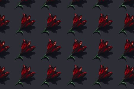 Red lilies on dark background trend flat lay concept with fashionable toning. Many flowers pattern