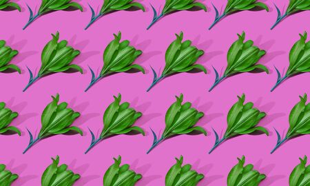 Seamless pattern of green lilies onpink background trend flat lay concept with fashionable toning. Many flowers pattern Banco de Imagens