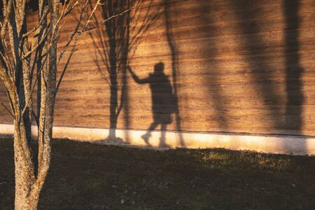 Woman shadow on wooden wall with tree. Nature background with copyspace