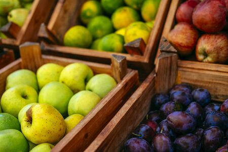 Exotic summer diet. Tropical organic fruit in crate. Apple, plam, pear delivery . Autumn harvest. Stock photo. Imagens
