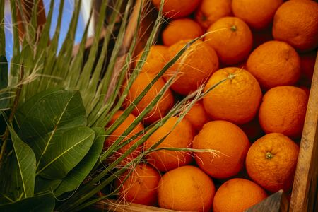 Exotic summer diet. Tropical organic fruit in crate with green leaves. Orange delivery . Autumn harvest. Stock photo.