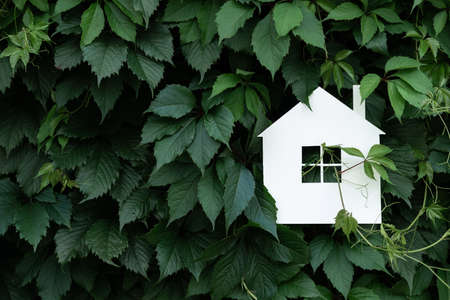 White paper house on a background of green leaves