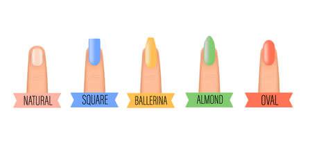 Nails shape icons set. Beauty spa salon colorful woman fingernails set. Professional manicure different shapes of nails 向量圖像
